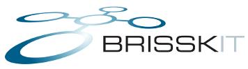 brisskit-logo-plain-100-0.2